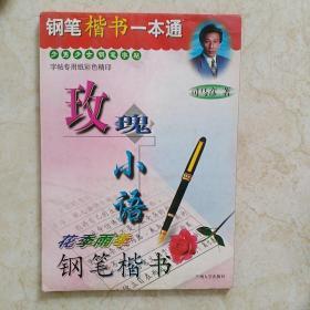 钢笔楷书一本通少男少女钢笔字帖玫瑰小语花季