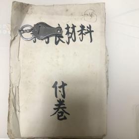 文革调查材料(一个上海知识青年下放到安徽所经历的文革。总共213页分7个部分。外调、内调、个人日记检查材料、狱友检举等)均手写