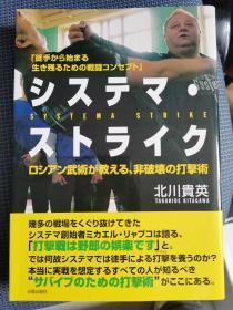 西斯特玛打击术(日文版)