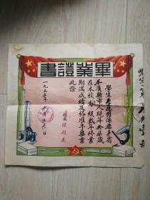 1955年毕业证书