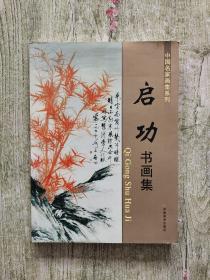 中国名家画集系列:启功书画集