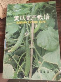 黄瓜高产栽培
