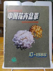 中国花卉盆景1986年第10期