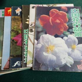 中国花卉盆景 1986年1-12