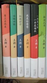 【包邮】王朔文集(6册)