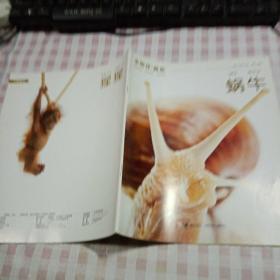 小聪仔·自然:蜗牛