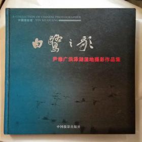白鹭之歌:尹修广洪泽湖湿地摄影作品集