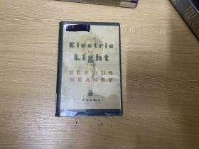 Electric Light    希尼  诗集 《电灯光》,诺贝尔文学奖得主,精装