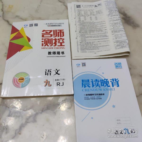 名师测控  九年级语文下册(RJ版)教师用书有答案  附有新教案