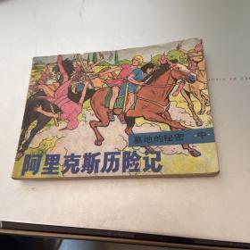 连环画: 阿里克斯历险记.墓地的秘密(中)