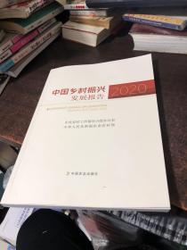 中国乡村振兴发展报告(2020)