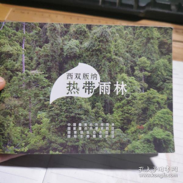 西双版纳热带雨林介绍