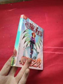 魔力口袋书:心灵之火