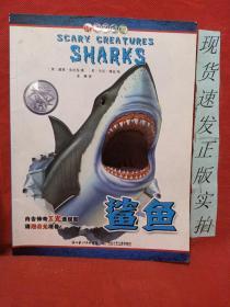 可怕的动物:鲨鱼