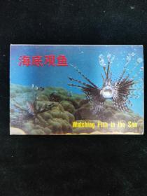 (明信片)海底观鱼