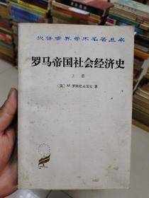 罗马帝国社会经济史(上册)