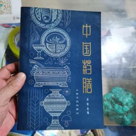 中国药膳,上海文化出版社