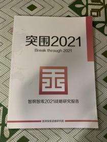 突围2021  智纲智库2021战略研究报告