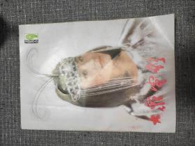 大众电影 1986年第9期 封面:林青霞!关键词:台港影星谱,香港电影掠影,演变中的香港功夫电影!