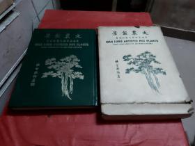 文农盆景【1974年 增订再版】带原盒
