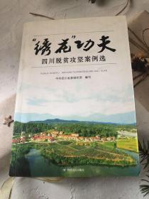 绣花功夫 : 四川脱贫攻坚案例选
