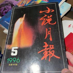 小说月报(1996年5期)