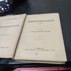 外文原版(罗兹克维塔尼)精装:1932出版