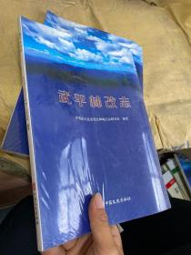 武平林改志