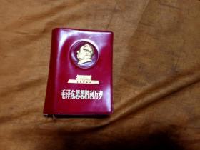 毛泽东思想胜利万岁(红塑料软精装)
