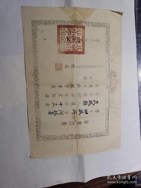 1954年毕业证书