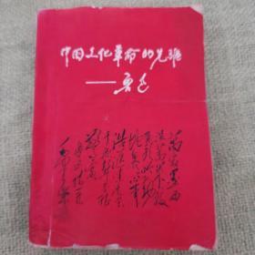 中国文化革命的先驱——鲁迅