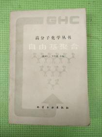 自由基聚合【高分子化学丛书】