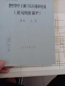 池型快中子钠冷反应堆核电站(超凤凰核锅炉)