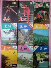 气功 (1984年1-6全年、1985年1-3期)(合售包邮)