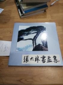张大林书画集