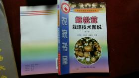 姬松茸栽培技术图说