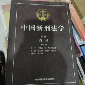 中国新刑法学