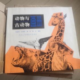 动物与古动物画册