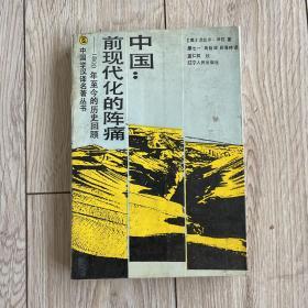 中国:前现代化的阵痛:1800年至今的历史回顾