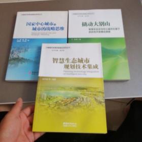 中国城市发展创新模式系列丛书:撬动大别山+国家中心城市与城市的战略思维+智慧生态城市规划技术集成【3本合售】