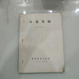 小说类稿(铅字打印本)