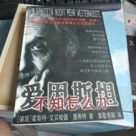 爱因斯坦不知怎么办:天国上人类导师们不朽灵魂的一次紧急高峰会议