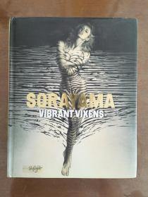 Vibrant Vixens,Sorayama,空山基,2013年,画册,精装