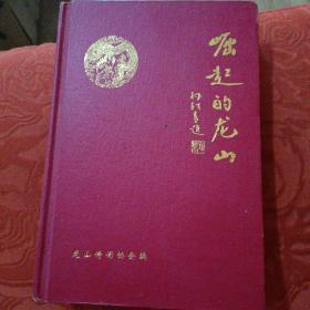 崛起的龙山(湖南省龙山县)
