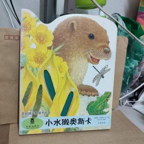 亮丽精美触摸书:小熊波比,小兔比利,小猫头鹰奥奇。要水塔奥斯卡(中英双语)四本合售