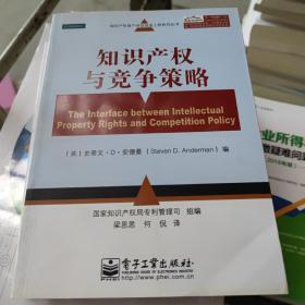 知识产权资产评估促进工程系列丛书:知识产权与竞争策略