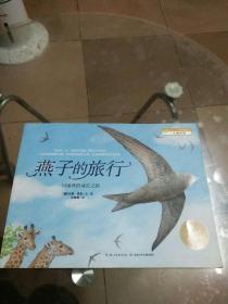 燕子的旅行:一只雨燕的成长之路