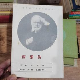 世界名人文学传记丛书——雨果传