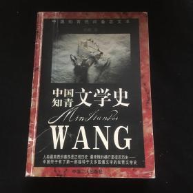 中国知青文学史