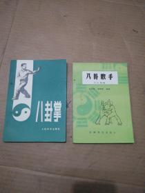 八卦掌+八卦散手(六十四路)2册合售